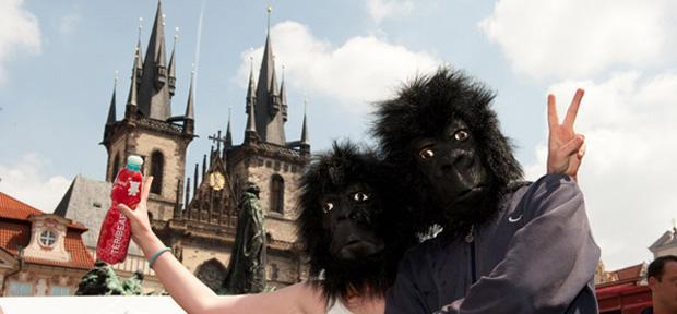 Prahou prebehnú Gorily