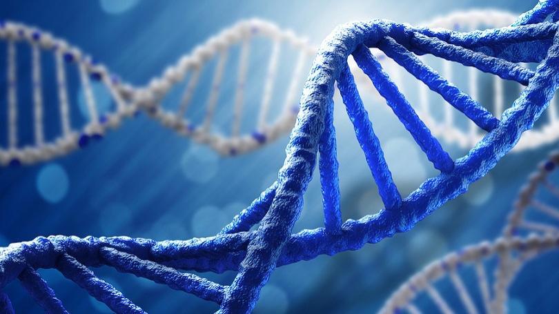 Dobrý vytrvalec potrebuje správne gény