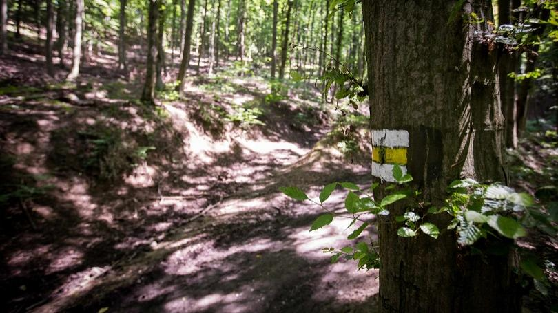 Bežci pozor! Rezort obrany upozorňujú na dodržiavanie pravidiel pri vstupe do vojenských lesov