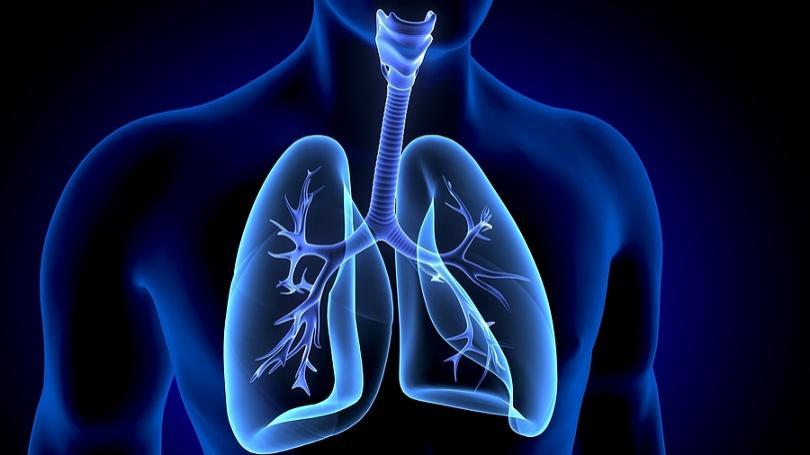 ZDRAVIE: Vedci našli tuk v pľúcach ľudí s nadváhou, môže zhoršovať astmu