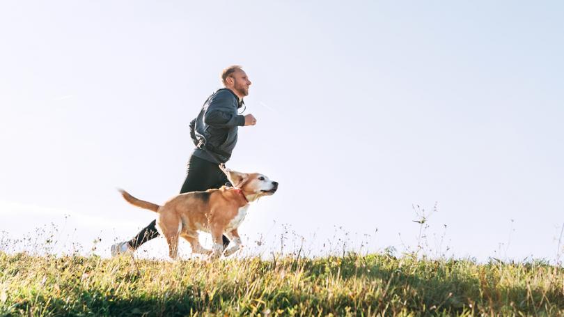 V Juhoafrickej republike nebudú môcť 21 dní venčiť psov a ani behať
