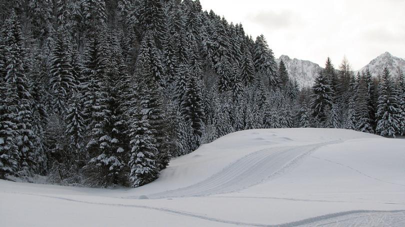 Bežkárske trate v Osrblí budú otvorené aj pre verejnosť