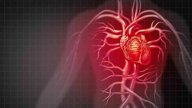 ZDRAVIE: Štúdie potvrdzujú, že chrípka môže spôsobiť závažné kardiovaskulárne komplikácie